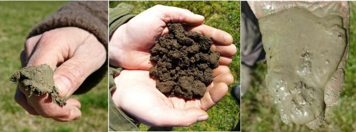 Til venstre: Leire. Til høyre: Silt. (Foto: Siri Svendgård-Stokke). I midten: Svært fruktbar jord fra Stavanger-området (Foto: Åge Nyborg).