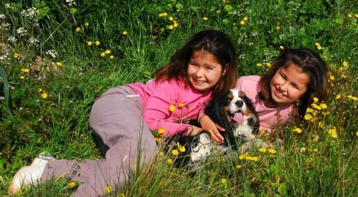 Er du hundemenneske? Det kan ligge i genene dine