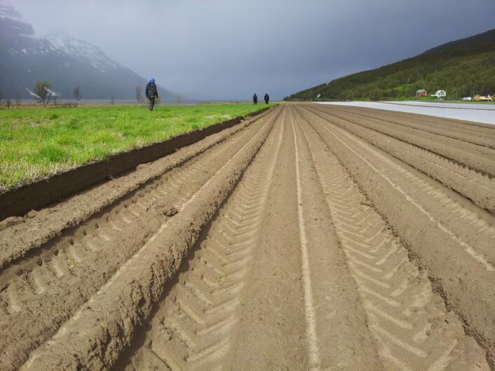 Jordkartleggere på jobb i Målselv, Troms. (Foto: Åge Nyborg)