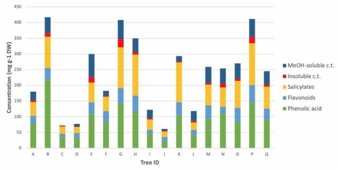 Figuren viser variasjon i innhold av ulike fenol-baserte stoffer i hvert individuelle ospetre. (Figur: NINA)