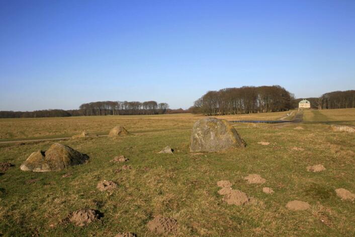 Et gammelt tingsted, nord for Købehavn i Danmark. (Foto: Karsten Schnack/Scanpix Danmark/NTB Scanpix