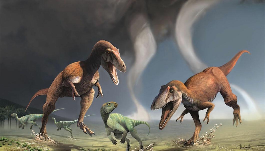 Gualicho shinyae har akkurat like pinglete armer som tyrannosaurus. Hva i all verden er de godt for?  (Illustrasjon: Jorge González & Pablo Lara)