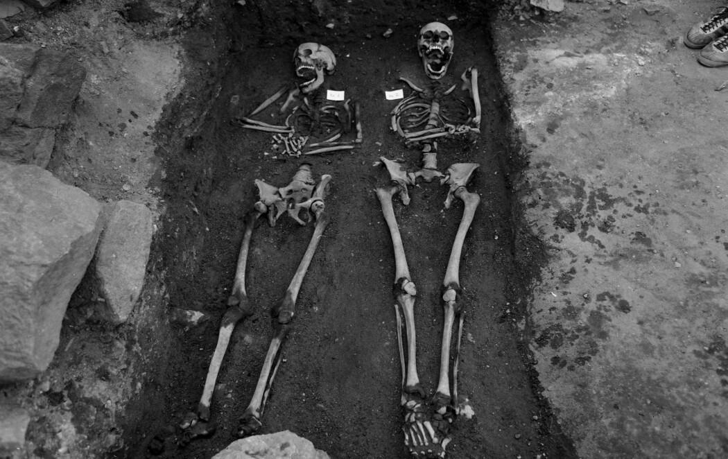 Forskere har undersøkt skjelett fra Clemenskirkegården. Analysene avslører mye om kostholdet deres. Bildet er fra utgravingen i 1970. (Foto: Ole Egil Eide, Riksantikvaren CC BY 4.0)