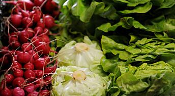 Kronikk: Urealistiske mål om økologisk mat