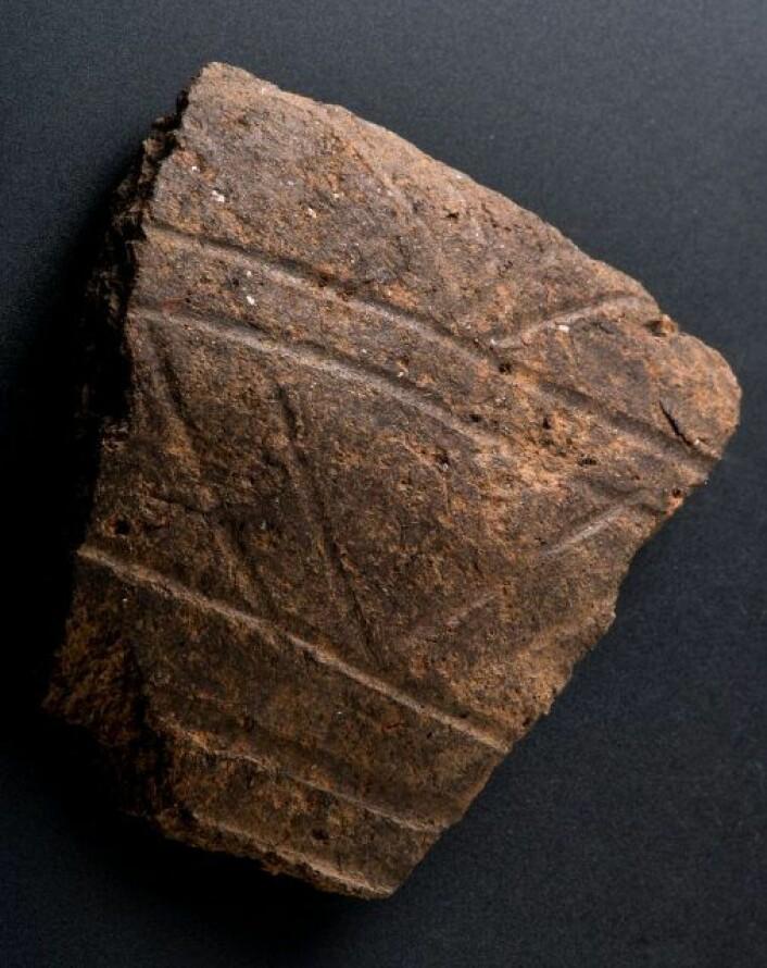 Keramikk fra yngre romertid/folkevandringstid fra fjorårets undersøkelse. Funnet i et av stolpehullene til et langhus. Foto: Åge Hojem, NTNU