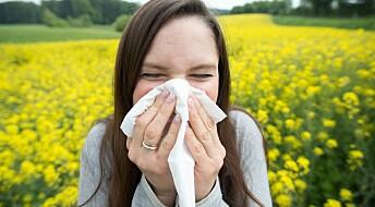 Flere plages av pollenallergi