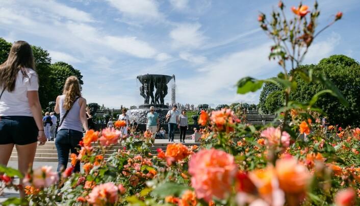 Byparkene som lå lengst ut fra Antwerpen sentrum, og nærmest rådyr-områder og naturområder, hadde flest flått, ifølge studien. Om funnene ville vært de samme i en norsk by, vet vi ikke. (Foto: Audun Braastad / NTB scanpix)