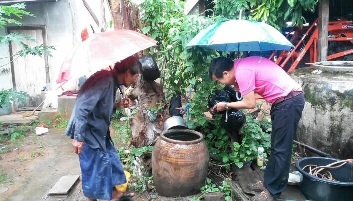Mygglarver klekkes i slike vannbeholdere som er meget vanlige i husholdninger i Thailand og Laos. (Foto: DENGUE-INDEX)