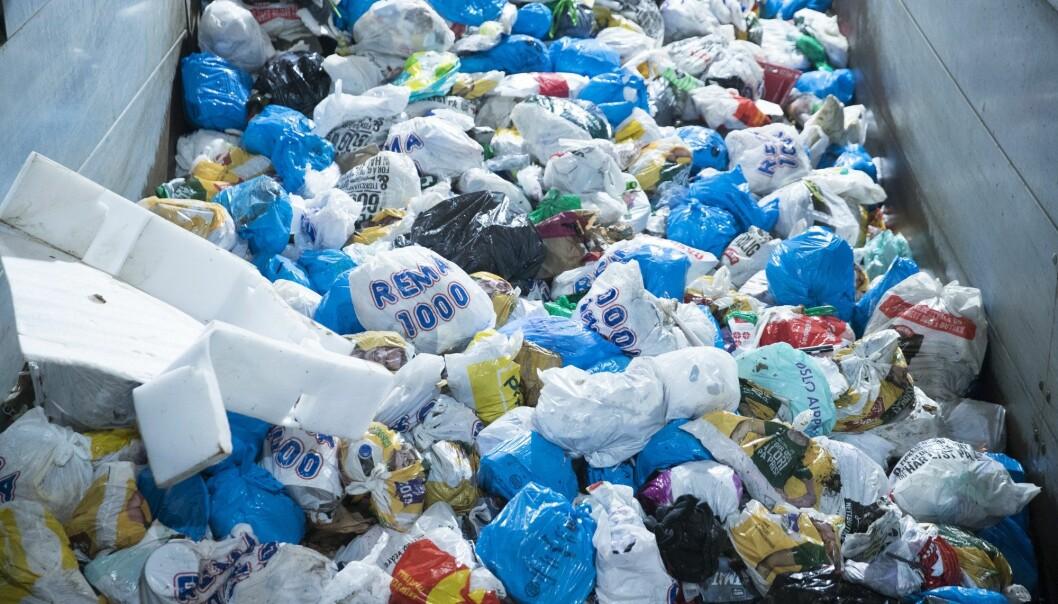 I fjor kastet norske husholdninger i gjennomsnitt 411 kilo avfall per innbygger. Det er en nedgang på 3,5 prosent sammenlignet med året før. (Foto: Terje Pedersen, NTB scanpix)