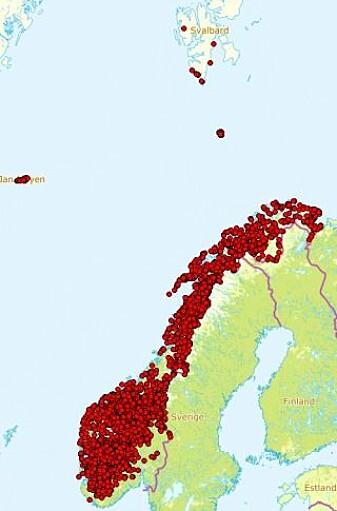Observasjoner av musøre i Norge. (Illustrasjon: Artsdatabanken)
