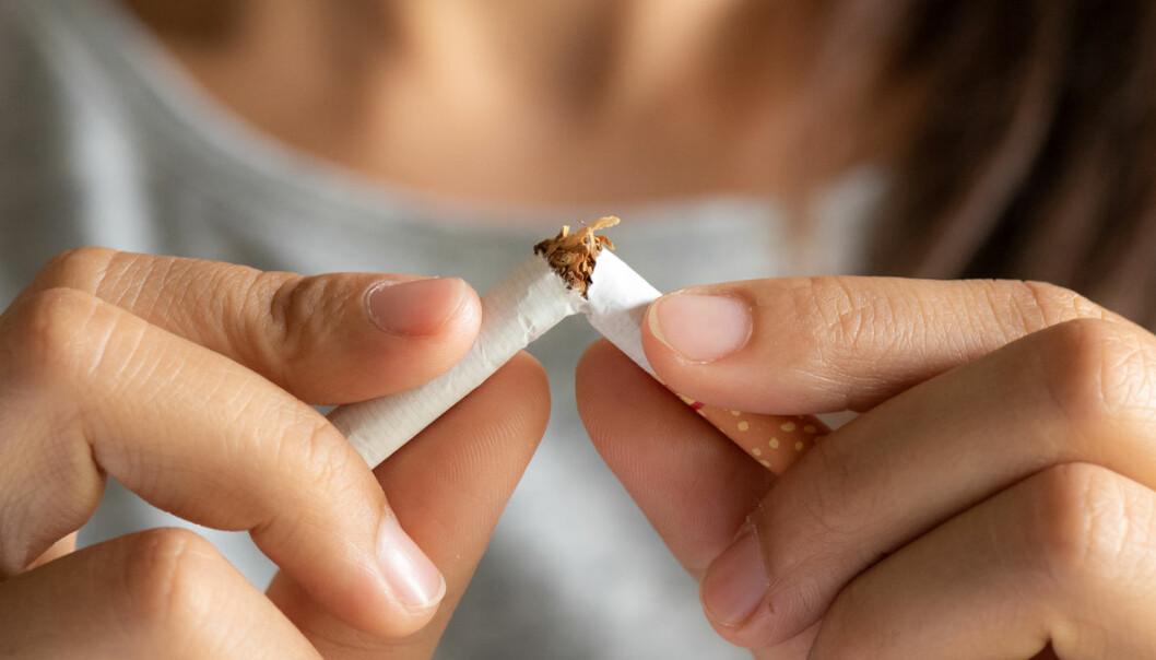 Mindre farlig å gå opp i vekt etter røykeslutt enn å fortsette med røykingen