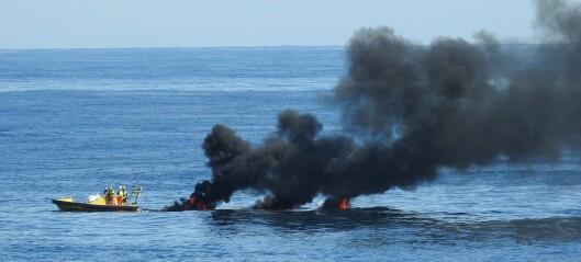 Norsk oljevernberedskap – kan den redde sjøfugl ved et utslipp?