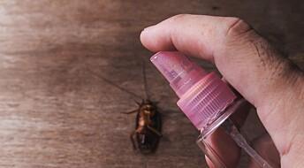 Kakerlakkene begynte raskt å tåle forskernes insektmidler