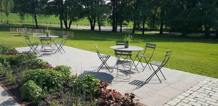 En enkel hage er avhengig av god utforming og godt gjennomtenkte materialvalg, ifølge professor Kine Halvorsen Thorén ved NMBU. (Foto: Kristine Løwe)