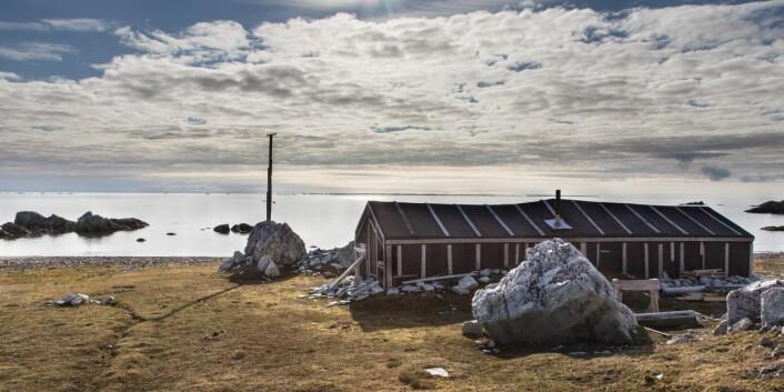 #Svalbardfølelse i Hyttevika over 80 år etter Wanny Woldstad kom dit første gang. Foto: Børge Damsgård, UNIS