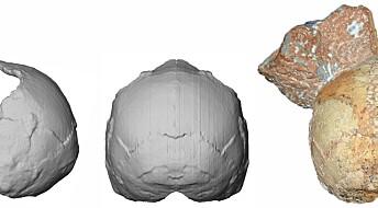 Forskere hevder de har funnet en 210 000 år gammel Homo sapiens-skalle i Hellas