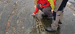 Geologer saumfarer Røros og Tydal i kartleggingsprosjekt