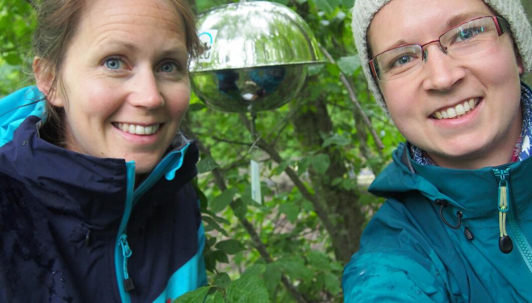 De neste tre ukene skal et femtitalls slike luftprøvetakere henges ut rundt omkring i hele Norge, for å finne ut mer om hva slags miljøgifter som befinner seg i lufta hvor og i hvilke mengder. Forskerne Ingjerd Sunde Krogseth (til høyre) og Helene Lunder Halvorsen startet i Kirkenes 20. juni, og avslutter på Østlandet 11. juli.  (Foto: NILU)
