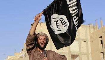 Når IS har kunnet danne en slags stat i Syria og Irak, skyldes det først og fremst at de virkelige statene som terrororganisasjonen gjør dette innenfor, ikke fungerer. Her en IS-soldat i en militærparade i byen Raqqa i Syria.  (Foto: Reuters/NTB scanpix)