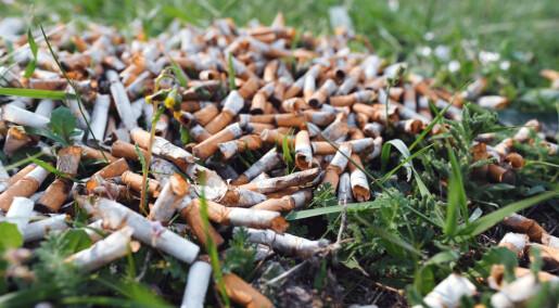 Hvert år havner 4,5 billioner sigarettsneiper i naturen, nå tror forskere at de skader plantene våre