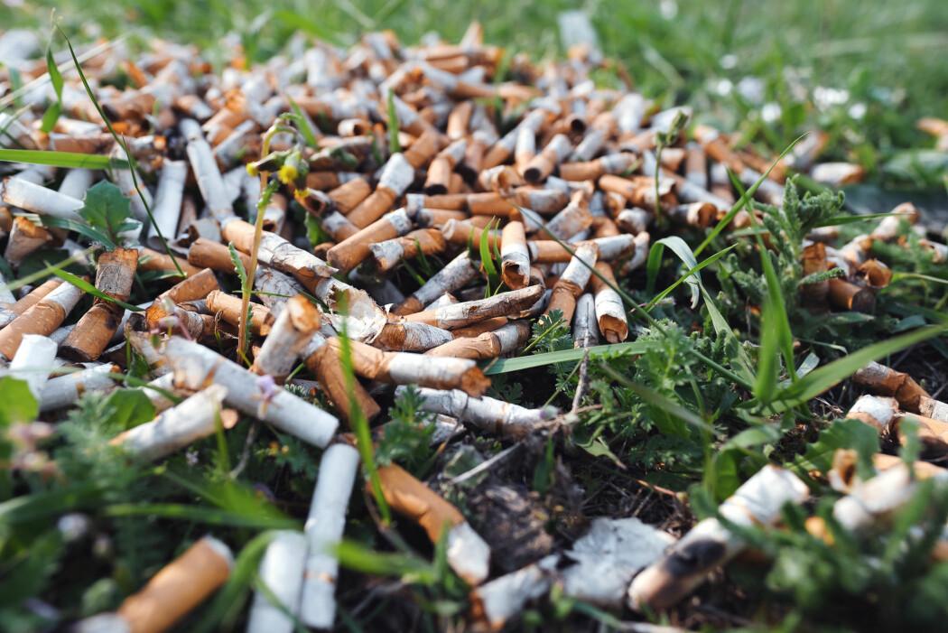 – Det å slippe sigarettsneiper på bakken virker som en sosial akseptabel form for forsøpling, sier forskeren bak en ny studie. (Foto: Larina Marina / Shutterstock / NTB scanpix)