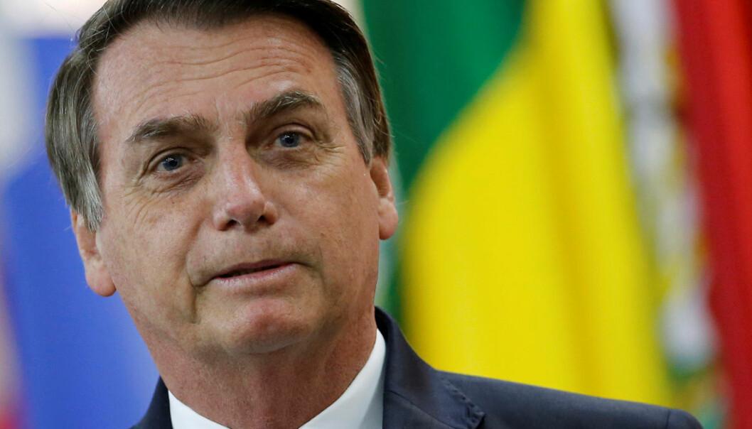 Avskogingen i Amazonas har skutt fart under Brasils nye president