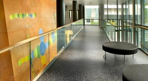 Ny struktur i høgskolesektoren