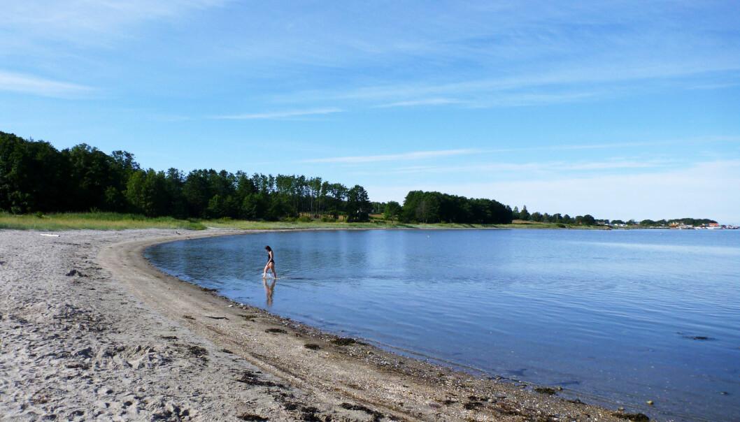 Forskere forventer at havnivået vil stige med omtrent 80 centimeter rundt norskekysten. Dette kan kunne påvirke størrelsen på strendene. (Foto: Erik Johansen / NTB scanpix)