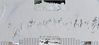 Førsteprisen til norsk Antarktis-kart