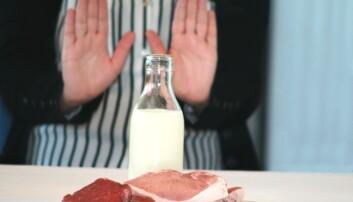 Det er trendy å velge bort kjøtt og melk fra kostholdet. Det kan få konsekvenser for helsen. (Foto: Janne Karin Brodin)