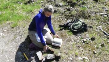 Grafittnerdene på arbeid – vi samler steinprøver fra den gamle gruva for å prøve å få ny innsikt i hvordan grafitt dannes. (Foto: Håvard Gautneb)