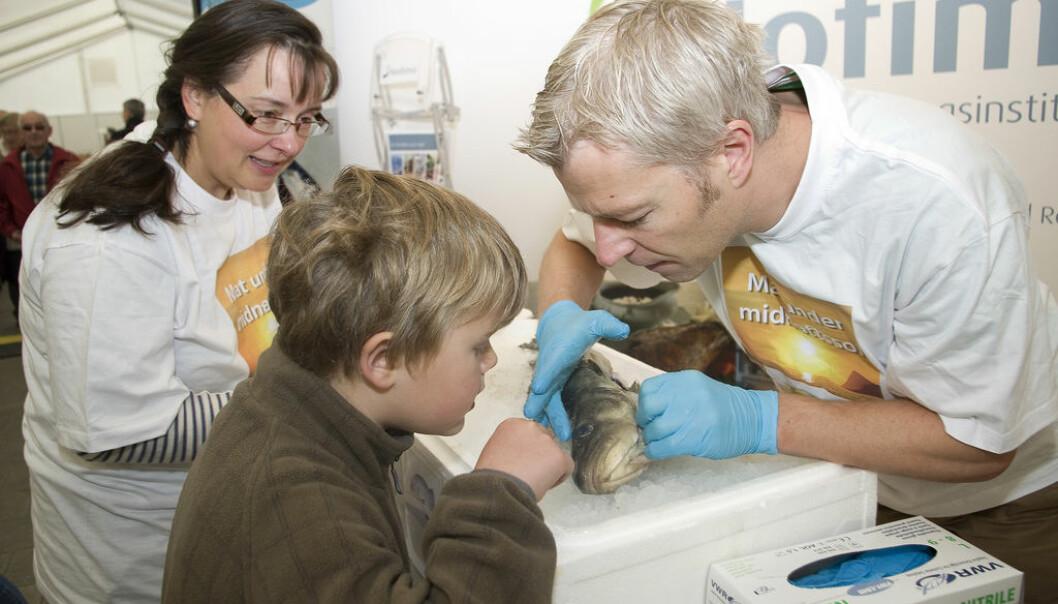 Maten blir mye mer interessant om vi lukter på og undersøker hele fisken, mener Mats Carlehøg, sensoriker i matforskningsinstituttet Nofima. (Foto: Jon-Are Berg-Jacobsen, Nofima)