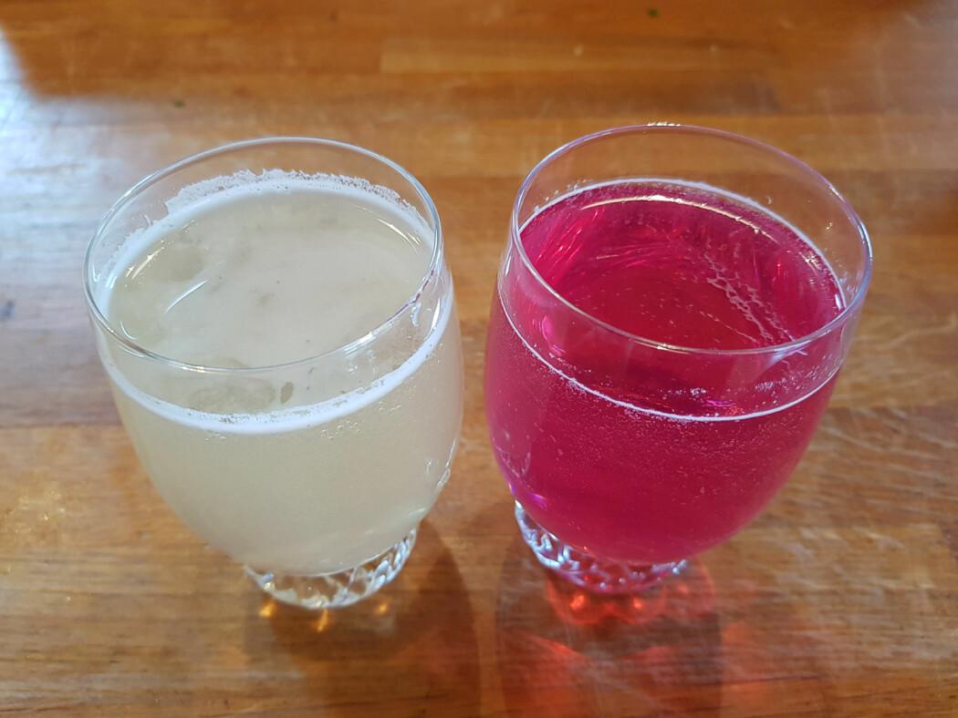 To glass nydelig saft av mjødurt og geitrams. Foto: Magni Olsen Kyrkjeeide