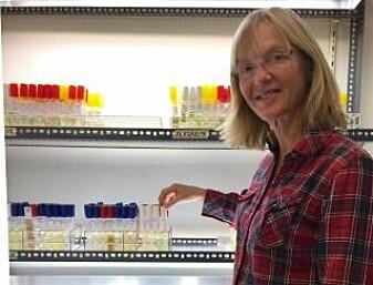 Professor Bente Edvardsen ved Seksjon for akvatisk biologi og toksikologi, Institutt for biovitenskap. (Foto: Helene Thorstensen/UiO)