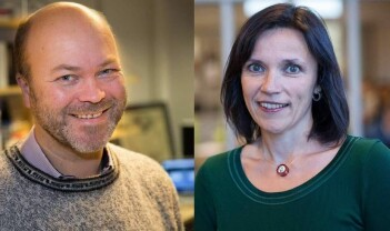 Liksom-nynorsk og språklege rettar