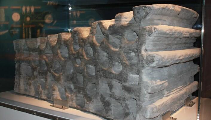 Månens regolitt kan brukes til å skrive ut bygningsblokker, murstein, utstyr og annet som astronauter trenger. (Foto: ESA)