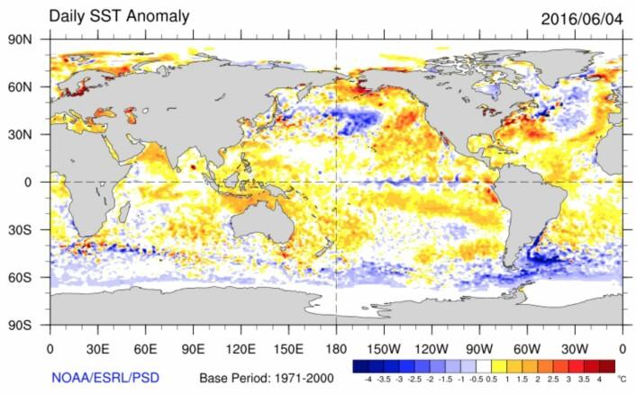 Temperaturen i havoverflaten (avvik fra normalperioden 1971 - 2000). (Bilde: NOAA)