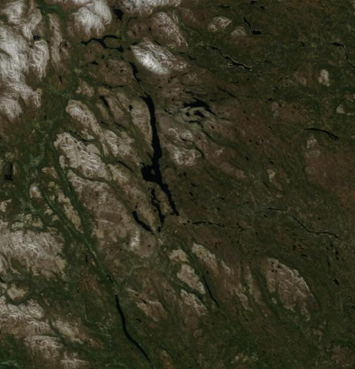 Fine farger i traktene rundt Femunden, her sett fra NASAs satellitt Terra 5 juni. (Bilde: NASA Terra MODIS)