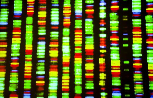 Etikk 24/7: Syntetisk DNA, godteforskning og Photoshop