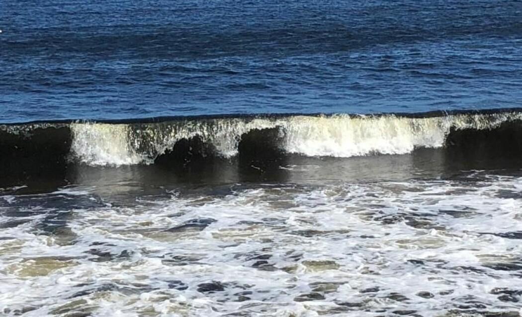 En bølgematematiker kan forklare om det faktisk er slik at hver sjuende bølge er ekstra høy. (Foto: Eivind Torgersen/UiO)