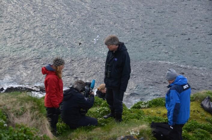 NRK-teamet i gang med opptak av Tone Reiertsen til åpningsprogrammet «Fuglefjellet». Forskere skal være med å forklare om sjøfuglenes liv i hele sommer. Det meste går direkte, men noe må tas opp. Helt siden 2014 har NRK forberedt seg. (Foto: Helge M. Markusson, Framsenteret)