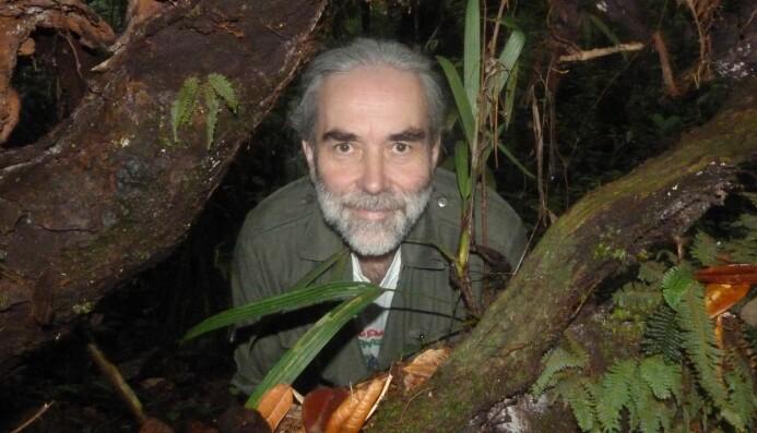 Forsker Eckhard W. Heymann trodde ikke at skogen skulle komme tilbake etter å ha blitt hogd helt ned. (Foto: Deutsches Primatenzentrum)