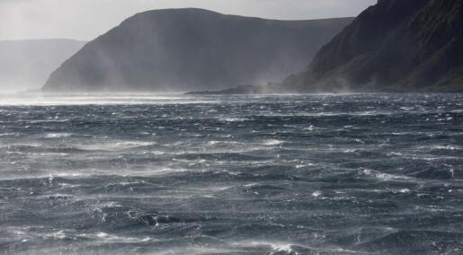 Forskningsrådet med ny, stor satsing på havteknologi