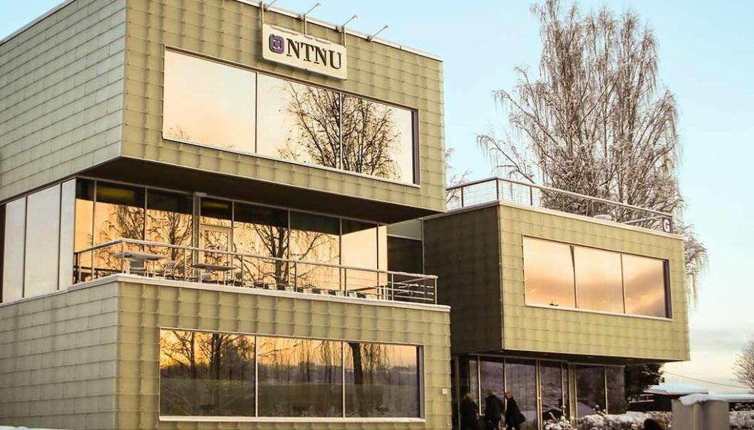 Språkdirektøren tilbyr NTNU nynorskkurs etter å ha sett eksamensoppgaven i statistikk og økonomi.  (Foto: NTNU Gjøvik.)