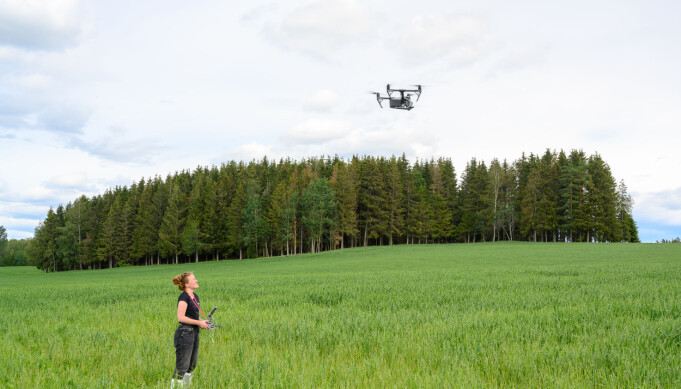 Dronebilder avslører hvor åkeren er angrepet. (Foto: Erling Fløistad)