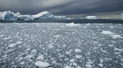 Rekordlite is i Arktis