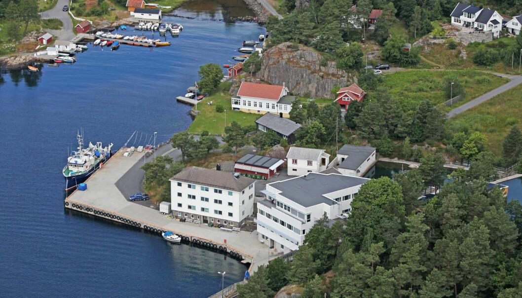 Havforskningsinstituttets forskingsstasjon i Flødevigen i Arendal er ein av Europas eldste institusjonar innan havforsking. (Foto: CCR/Havforskningsinstituttet)