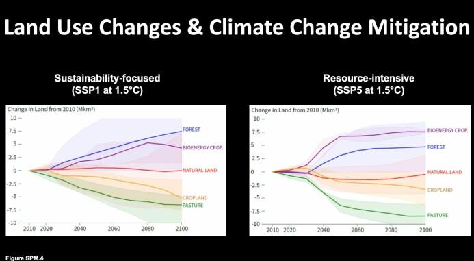 De to alternativene viser blant annet hvor mye skog vi må plante og beiteland vi må redusere om verden lever bærekraftig (til venstre) eller har en intensiv ressursbruk (til høyre). Er vi miljøvennlige, trengs det mindre arealendringer. (Illustrasjon: Francesco Cherubini/NTNU)