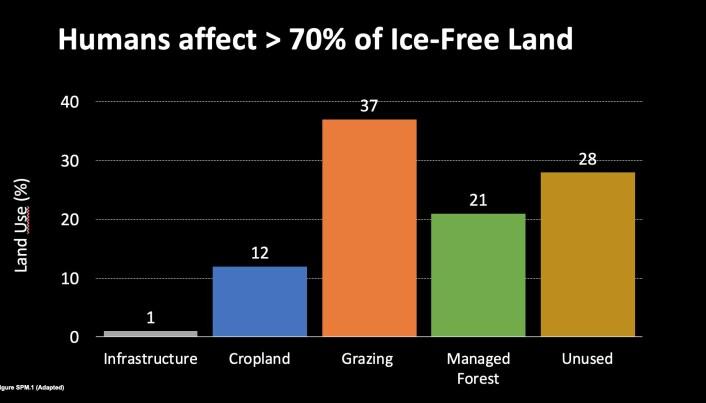 Hele 37 prosent av verdens isfrie landområder brukes til beiting. (Illustrasjon: Francesco Cherubini/NTNU)