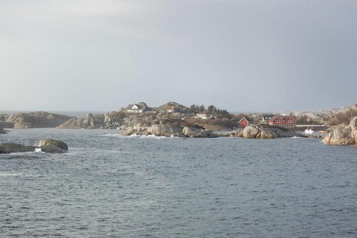 Fortunholmen ved Holmane i Hå på Jæren har fått sitt navn etter et skip som het «Fortuna» og som gikk på holmen og forliste. (Foto: Inge Særheim)